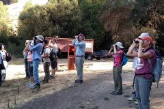 Lelena Avila birding